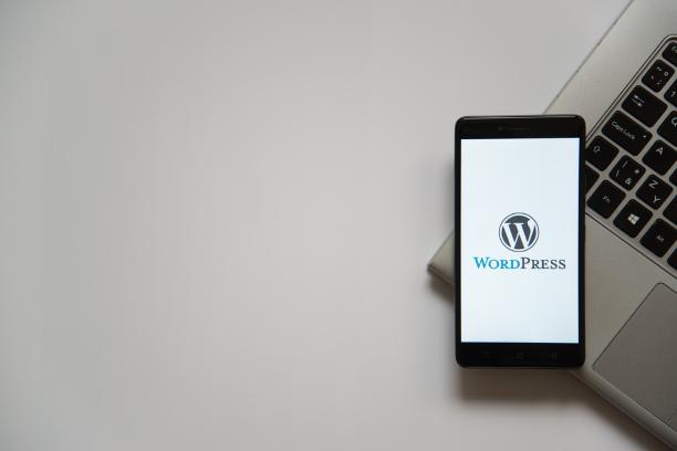 طراحی سایت وردپرس در قزوین